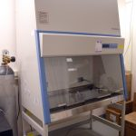 Thermo Scientific Biosafety hood